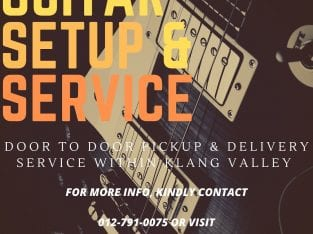 Guitar setup and service Door to Door Pickup