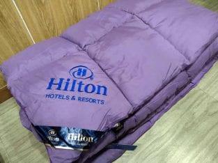 Totot Narita Hilton