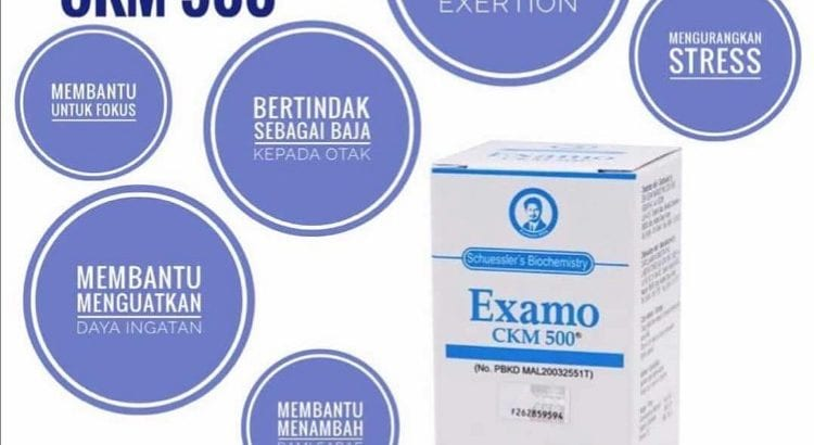 EXAMO-CKM 500