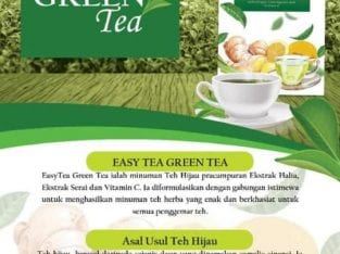 Green Tea (EASYTEA) with ginger and lemongrass