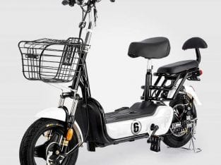 EBike model advance